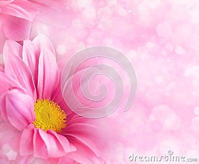 Milieux floraux abstraits