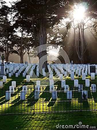 Military Cemetery USA