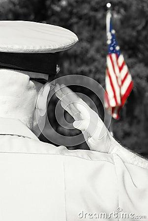 Military officer saluting flag