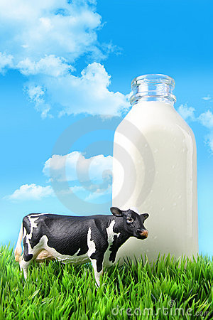 Free Milk Bottle In The Grass Royalty Free Stock Photos - 18102038