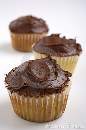 Free Milk Chocolate And Vanilla Cupcakes Stock Photography - 1926882