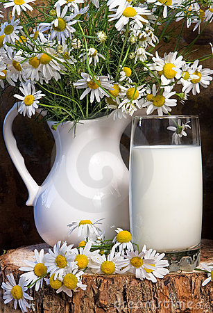 Milk jug and glass cheese in a glass dish