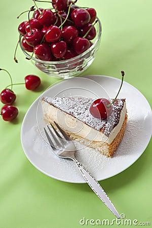 Free Milk Souffle (bird S Milk) Cake Stock Photography - 41443282