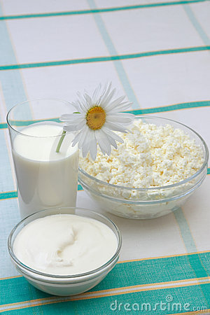 Free Milk, Sour Cream And Cottage Cheese Stock Images - 1645754