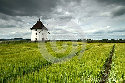Mill house and barley field