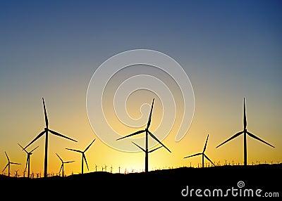 Millares de turbinas de viento en la puesta del sol