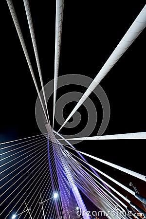Millenium bridge Putrajaya