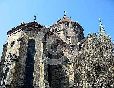 The millennium church - Timiso