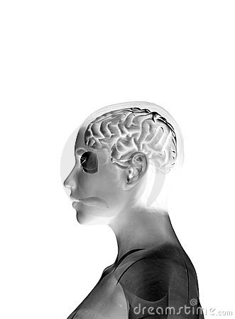 Min hjärna