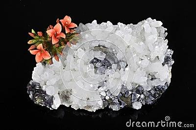 Minerai et fleur