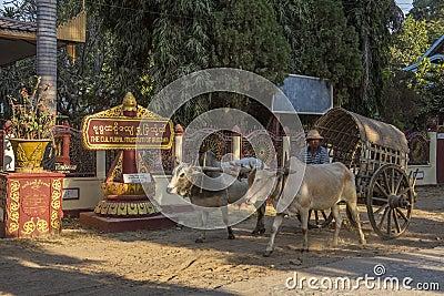 Mingun near Mandalay - Myanmar (Burma) Editorial Stock Image