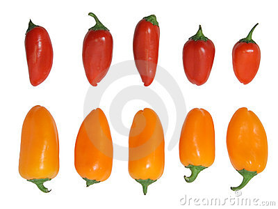 Mini bell peppers isolated