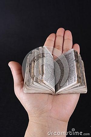 Mini book opened