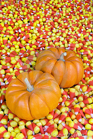 Mini Pumpkins in Candy Corn