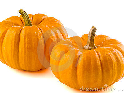 Mini Pumpkins Isolated 3