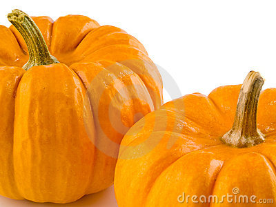 Mini Pumpkins Isolated 4