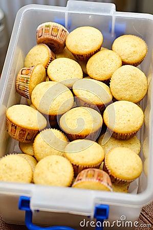 Mini vanilla muffins