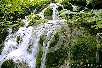 Mini waterfalls on Plitvice laiks