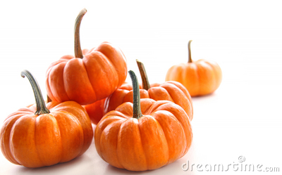 Miniature orange pumpkins against white