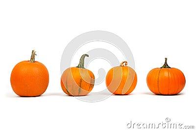 Miniature Pumpkins Free Public Domain Cc0 Image