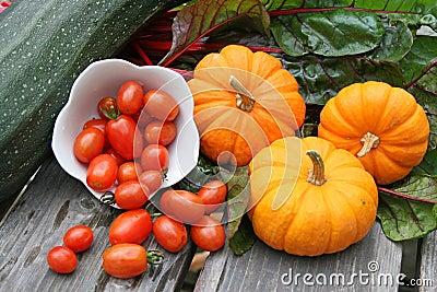 Miniature  pumpkins,swiss chard,cherry tomatoes,zucchini