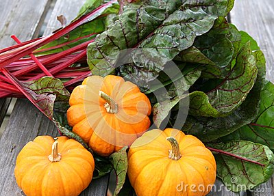 Miniature pumpkins and swiss chard