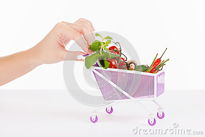 Miniature shopping cart