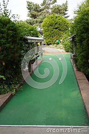 Miniatyrgolf spela golfboll i hål