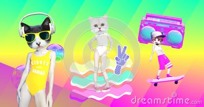 Minimal animation gif art. Funny Cats characters. Minimal summer vibes stock footage