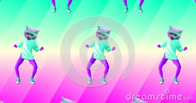 Minimal animation gif art. Funny Cats Dancing lover. Minimal seamless animation pattern stock video
