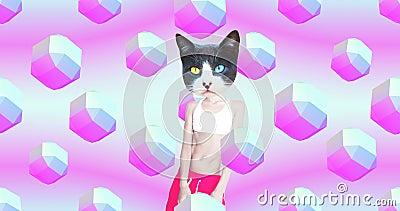 Minimal motion gif art. Beach Party style Dj Kitty. Funny animation modern design stock video