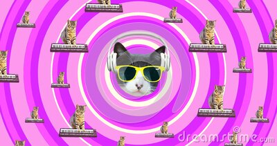 Minimal motion gif art. Musical cat gang. Funny animation modern design stock video
