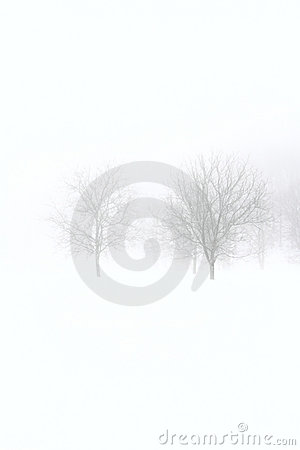 Minimal winter background