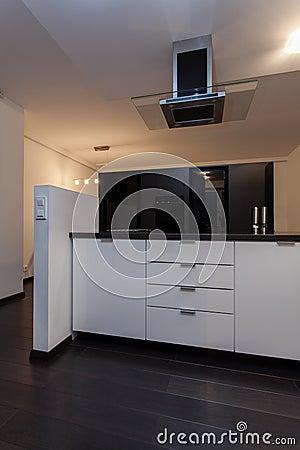 Minimalist apartment - kitchen with hood