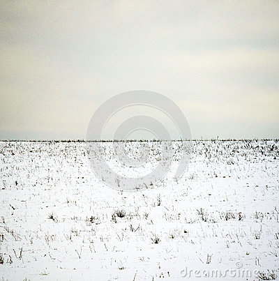 Free Minimalistic Winter Landscape Royalty Free Stock Images - 88987749