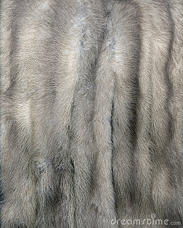 Mink Fur Gray