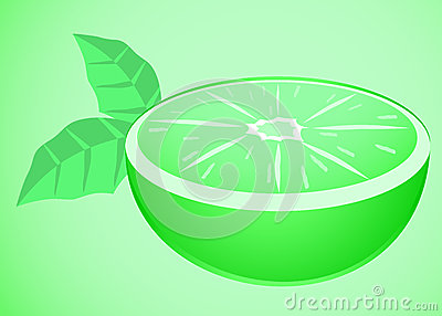 Mint fruit