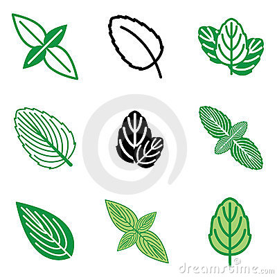 Mint leaf icons