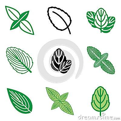 Mint leaf icons