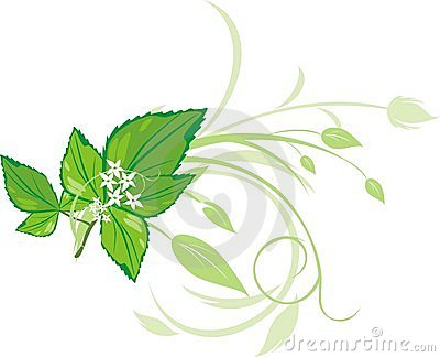 Mint sprig with floral ornament