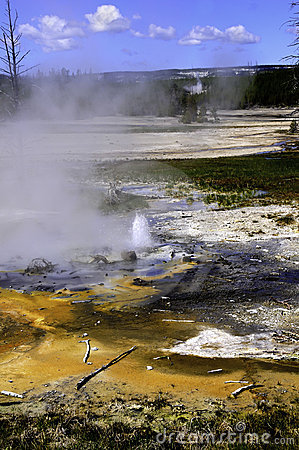 Minute Geyser, Yellowstone National Park