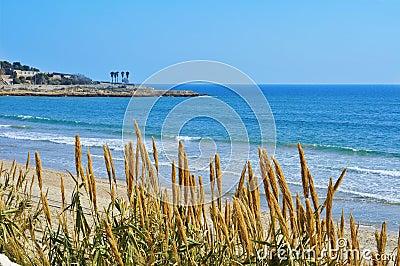 Miracle Beach in Tarragona, Spain