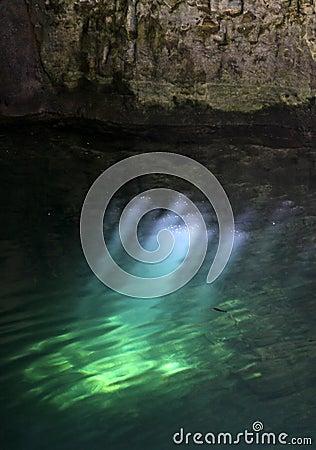 Miroitement de lumière de Cenote