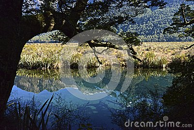 Mirror Lakes New Zealand
