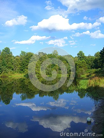 Mirrored Images of a Pond