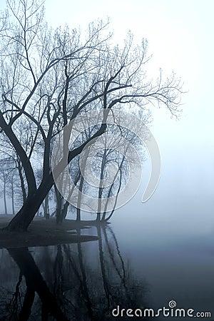 Missippi Fog