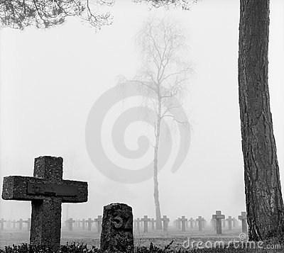 Free Mist At Cemetery Gravestone Cross Pine Trees Park Royalty Free Stock Image - 11549526