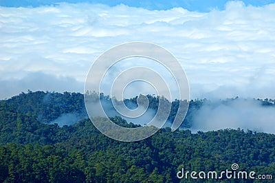 Mist and high peaks