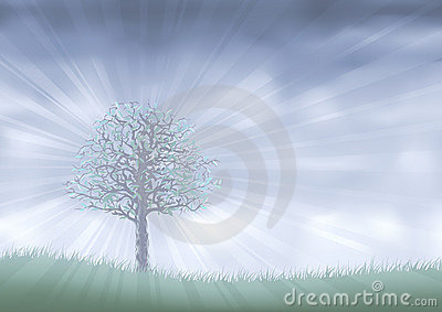 Mist realm