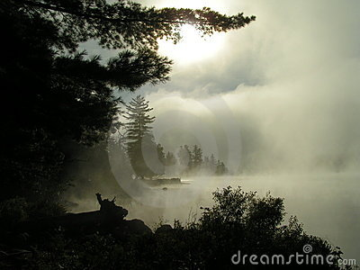 Mist rising from lake
